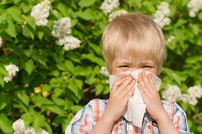всемирный день аллергии